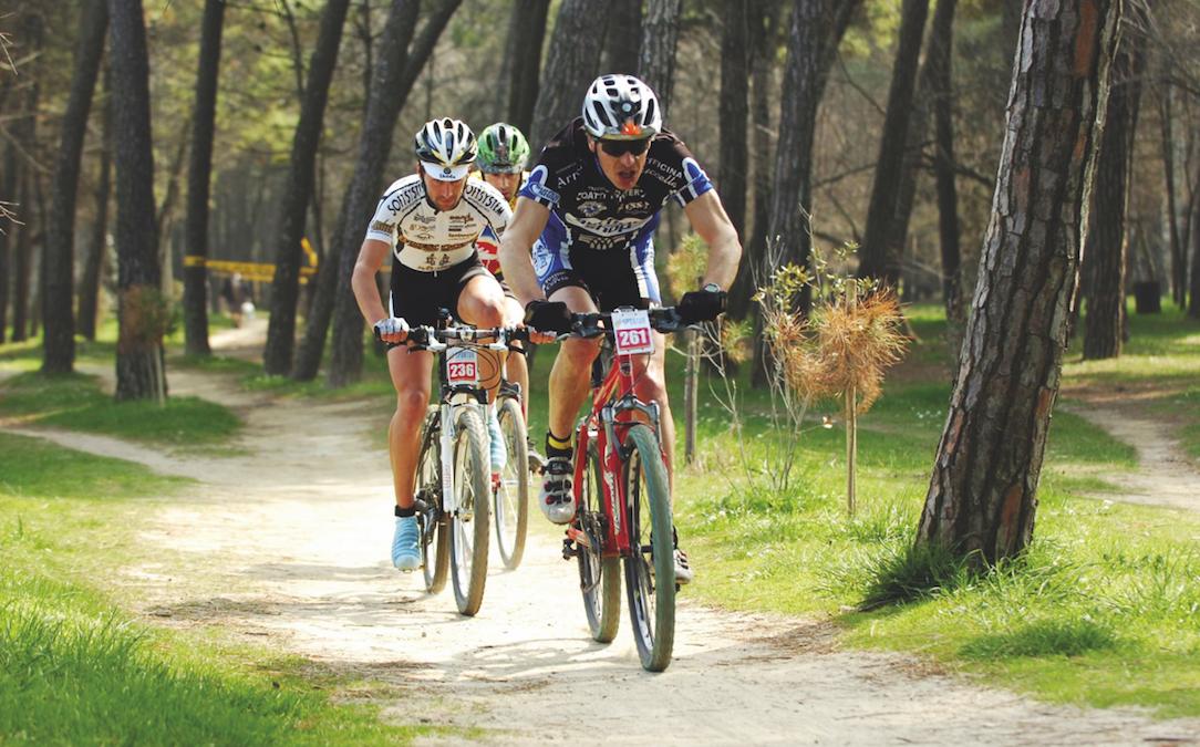 Bike in Pineta